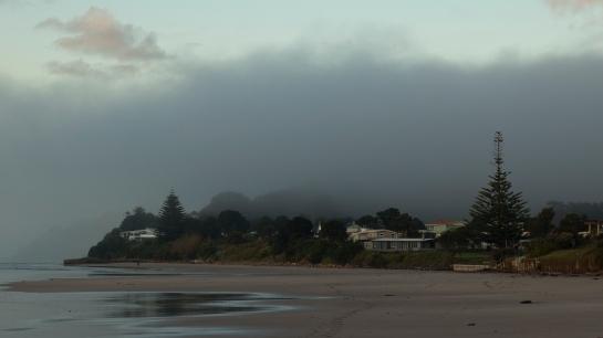 Wainui fog