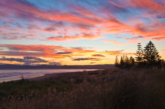 Bunnytail sunset_5342