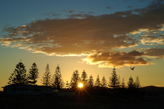 ANZAC sunrise