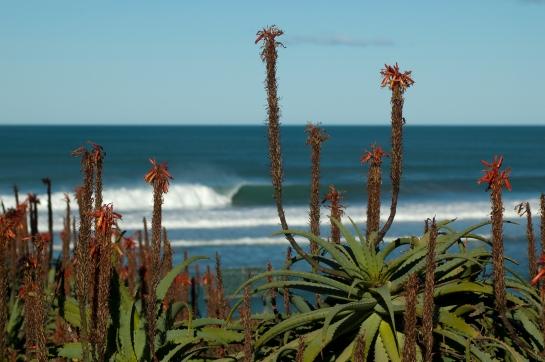 pumping surf